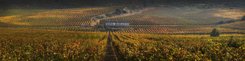 "Weinprobe ""La Rioja Alta"""